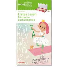 AH Erstes Lesen – Prinzessin Buchstabenfee