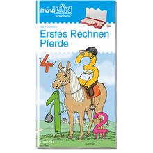 AH Erstes Rechnen Pferde/Fußball