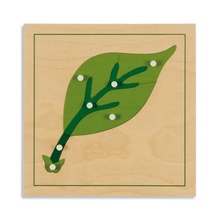 Botanische Puzzle: Blatt