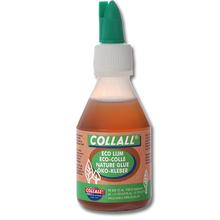 Collall Ökokleber
