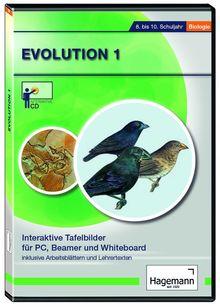 Evolution I