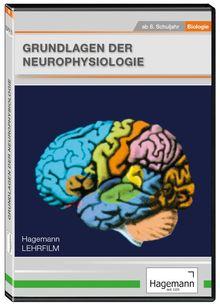 Grundlagen Neurophysiologie