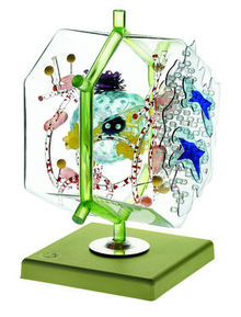 JS 15 Modell einer Leberzelle