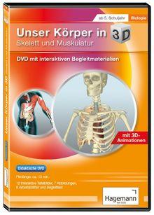 Körper 3D – Skelett und Muskelatur tabletfähig