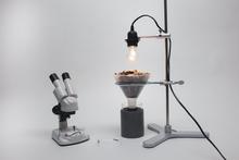 Kombi-Set Berlesea-Apparatur inkl. Stereoskop