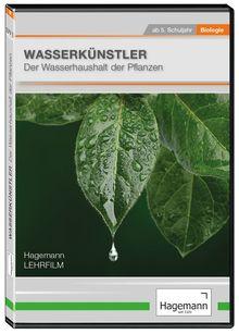 Wasserkünstler – Der Wasserhaushalt der Pflanzen