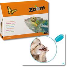 Zoom – die Welt der Tiere